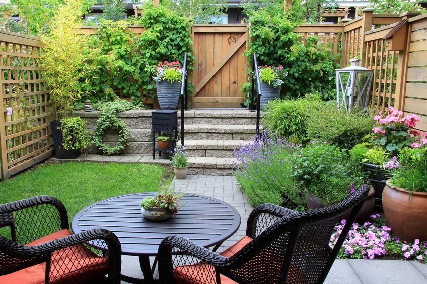 Des fleurs dans votre jardin potager, pourquoi pas?