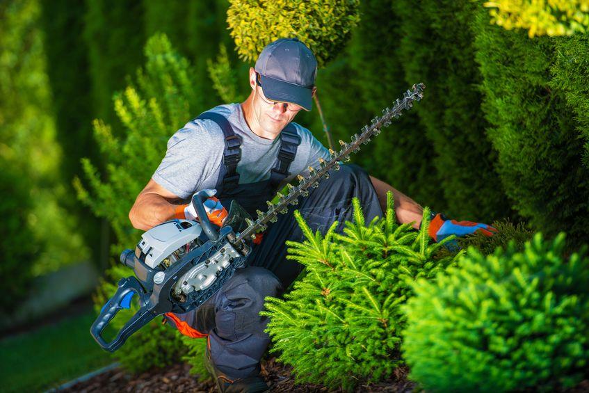Trois outils indispensables pour réussir les travaux de jardinage